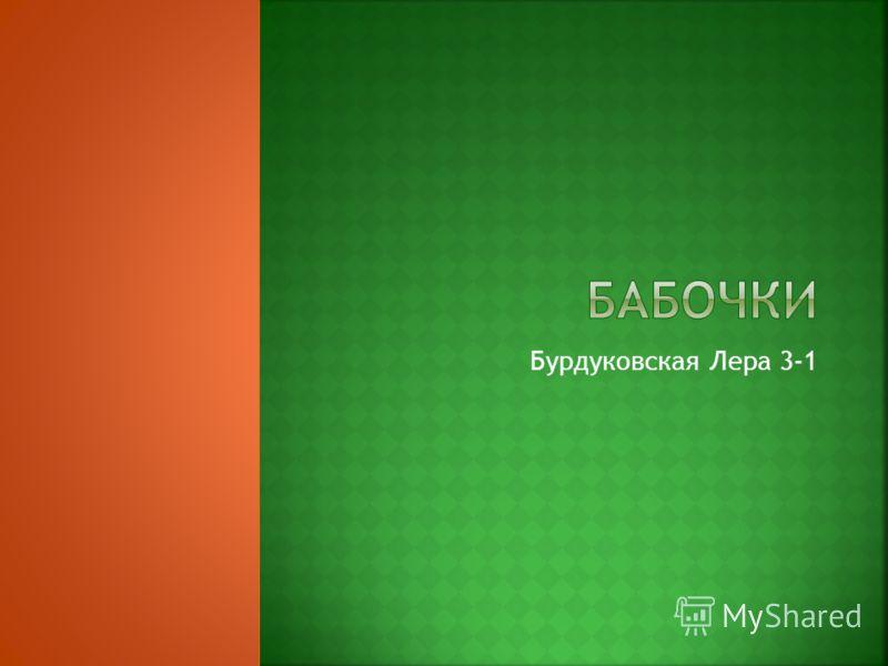 Бурдуковская Лера 3-1