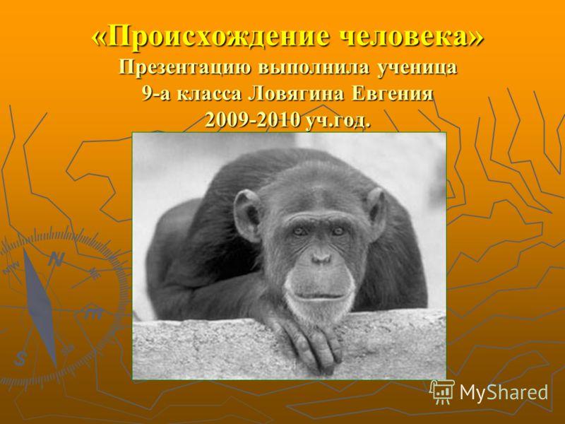 «Происхождение человека» Презентацию выполнила ученица 9-а класса Ловягина Евгения 2009-2010 уч.год.