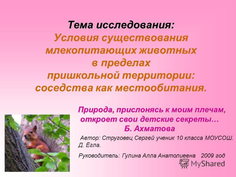 Тема исследования: Тема исследования: Условия существования млекопитающих животных в пределах пришкольной территории: соседства как местообитания. Природа, прислонясь к моим плечам, откроет свои детские секреты… Б. Ахматова Природа, прислонясь к моим