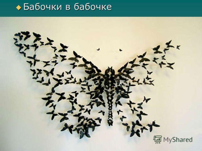 Бабочки в бабочке Бабочки в бабочке