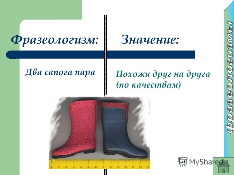 Фразеологизм:Значение: Два сапога пара Похожи друг на друга (по качествам)