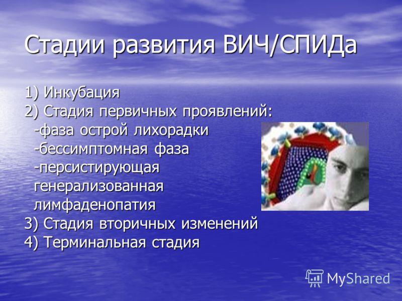 Стадии развития ВИЧ/СПИДа 1) Инкубация 2) Стадия первичных проявлений: -фаза острой лихорадки -фаза острой лихорадки -бессимптомная фаза -бессимптомная фаза -персистирующая -персистирующая генерализованная генерализованная лимфаденопатия лимфаденопат
