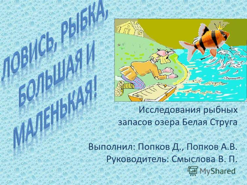 Исследования рыбных запасов озера Белая Струга Выполнил: Попков Д., Попков А.В. Руководитель: Смыслова В. П.