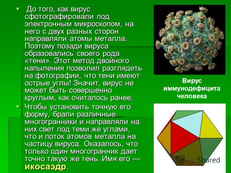 До того, как вирус сфотографировали под электронным микроскопом, на него с двух разных сторон направляли атомы металла. Поэтому позади вируса образовались своего рода «тени». Этот метод двойного напыления позволил разглядеть на фотографии, что тени и