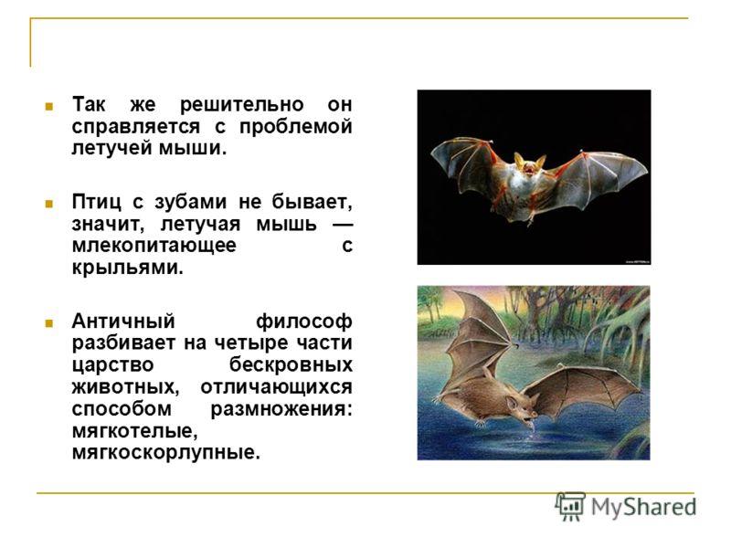 Так же решительно он справляется с проблемой летучей мыши. Птиц с зубами не бывает, значит, летучая мышь млекопитающее с крыльями. Античный философ разбивает на четыре части царство бескровных животных, отличающихся способом размножения: мягкотелые,