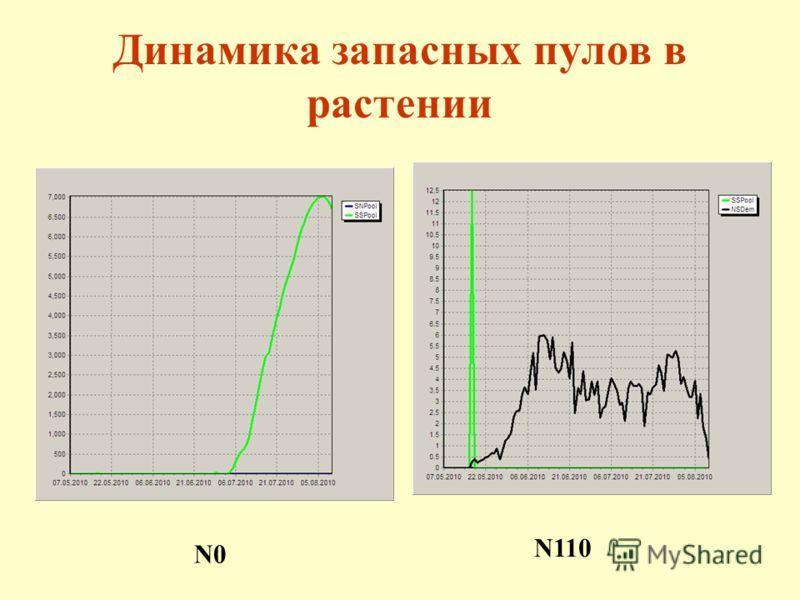 Динамика запасных пулов в растении N0 N110