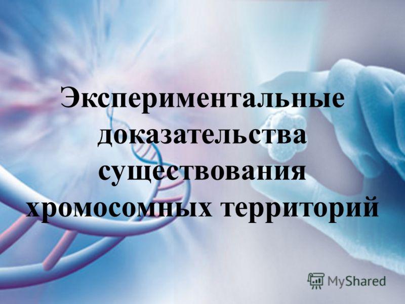 Экспериментальные доказательства существования хромосомных территорий
