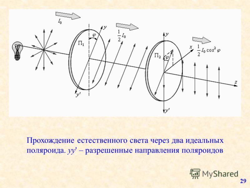 Прохождение естественного света через два идеальных поляроида. yy' – разрешенные направления поляроидов 29