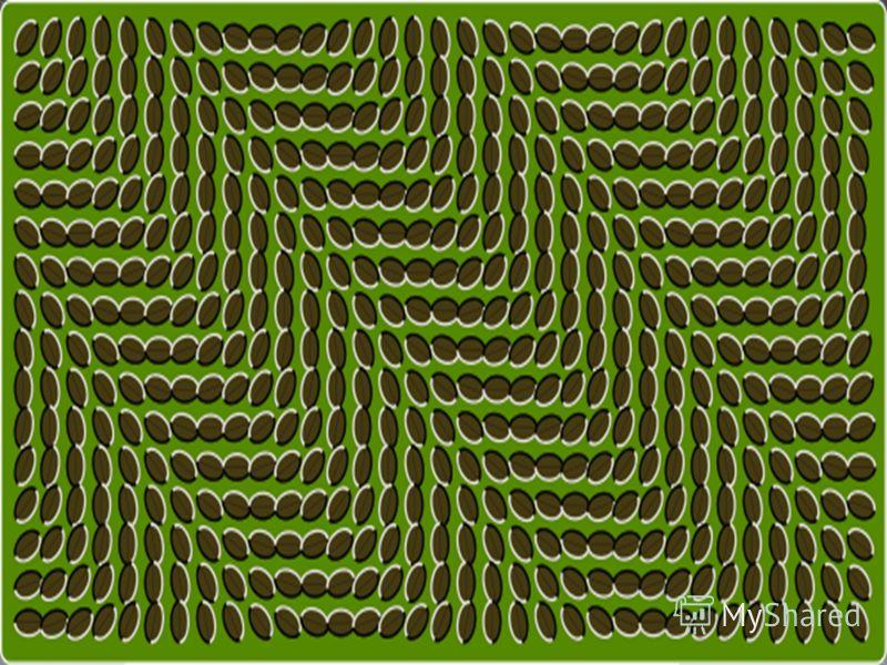 В этом случае статическое и неподвижное изображение как бы оживает и начинает двигаться.