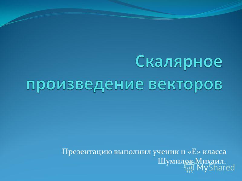Презентацию выполнил ученик 11 «Е» класса Шумилов Михаил.