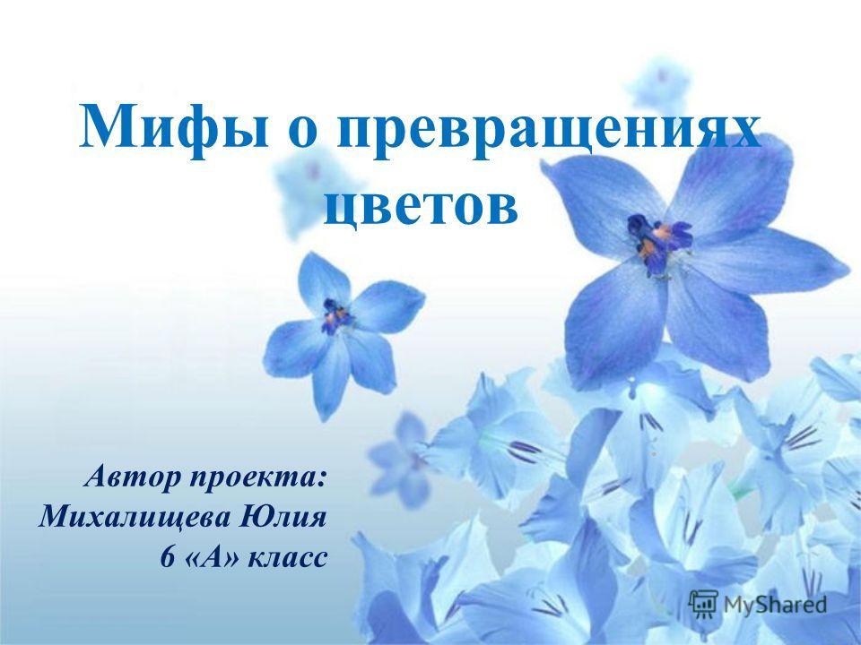 Мифы о превращениях цветов. Автор проекта: Михалищева Юлия 6 «А» класс