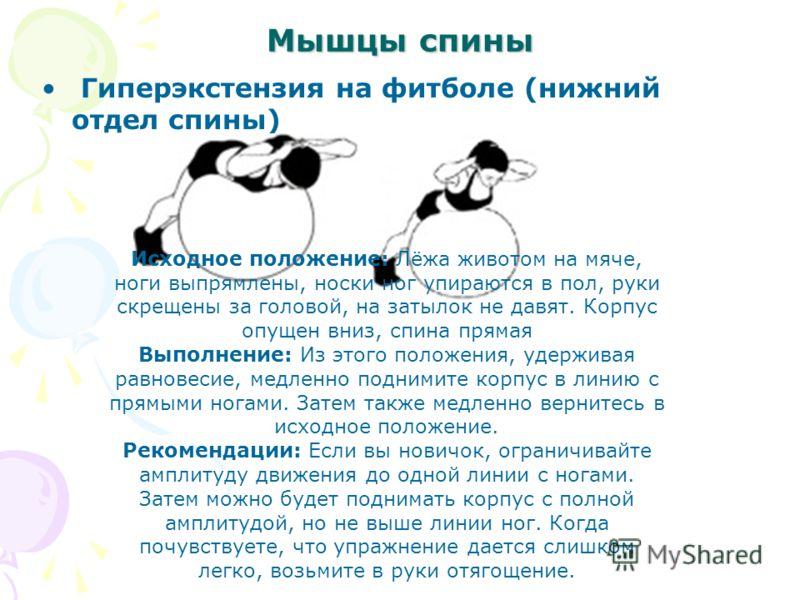 Мышцы спины Гиперэкстензия на футболе (нижний отдел спины) Исходное положение: Лёжа животом на мяче, ноги выпрямлены, носки ног упираются в пол, руки скрещены за головой, на затылок не давят. Корпус опущен вниз, спина прямая Выполнение: Из этого поло