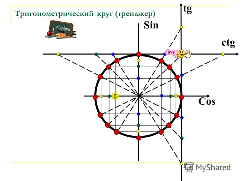 Тригонометрический круг (тренажер) tg Cos Sin ctg