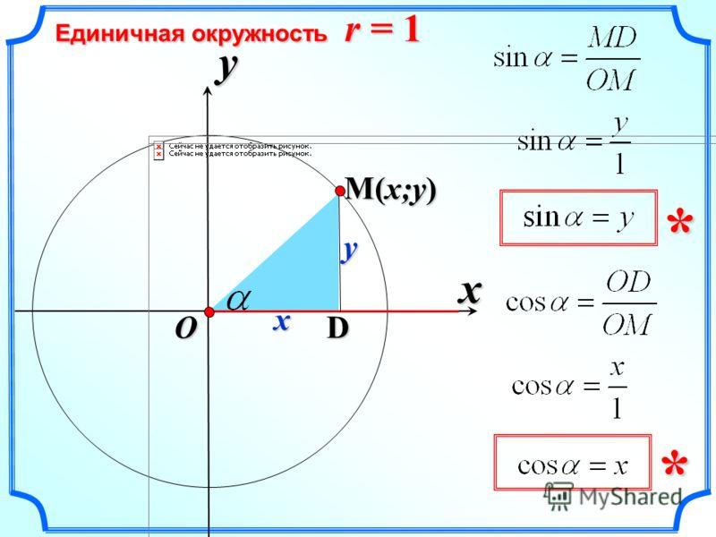 x Единичная окружность r = 1 y O x y D ** M(x;y)