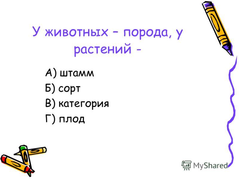 У животных – порода, у растений - А) штамм Б) сорт В) категория Г) плод
