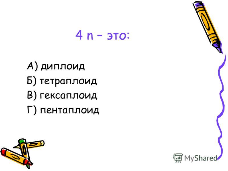 4 n – это: А) диплоид Б) тетраплоид В) гексаплоид Г) пентаплоид