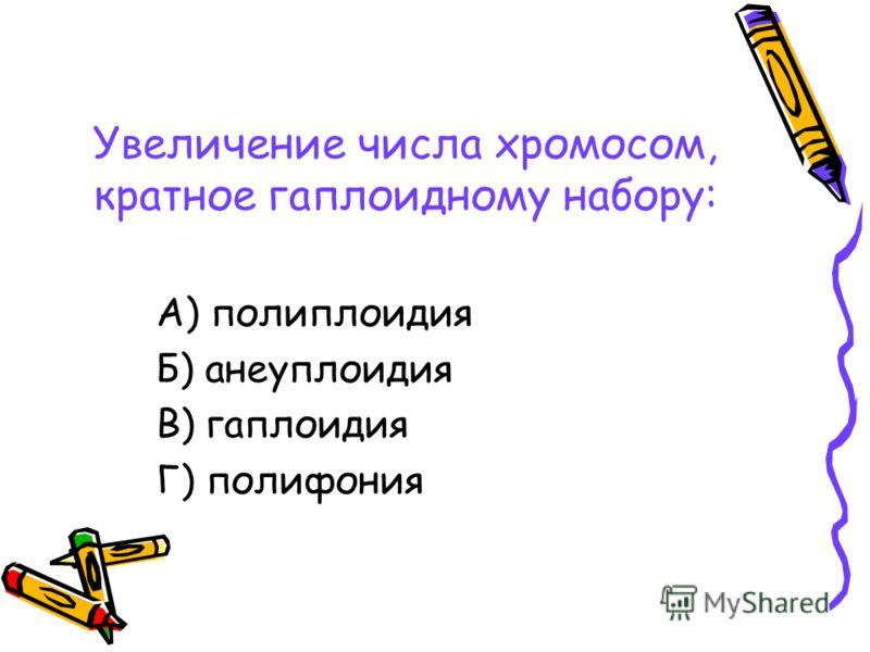 Увеличение числа хромосом, кратное гаплоидному набору: А) полиплоидия Б) анеуплоидия В) гаплоидия Г) полифония