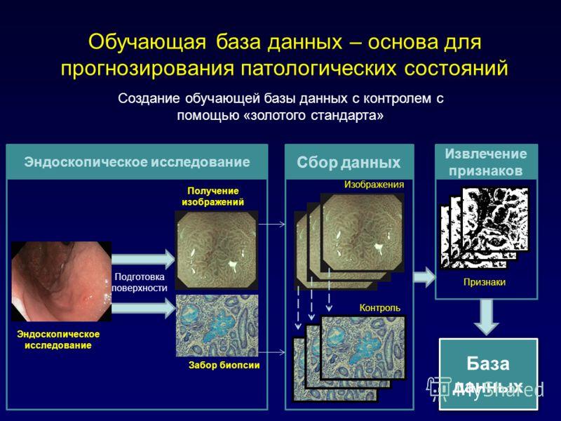 Создание обучающей базы данных с контролем с помощью «золотого стандарта» Обучающая база данных – основа для прогнозирования патологических состояний Подготовка поверхности Получение изображений Забор биопсии Эндоскопическое исследование Сбор данных