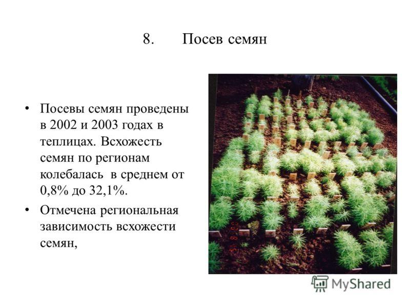 8. Посев семян Посевы семян проведены в 2002 и 2003 годах в теплицах. Всхожесть семян по регионам колебалась в среднем от 0,8% до 32,1%. Отмечена региональная зависимость всхожести семян,