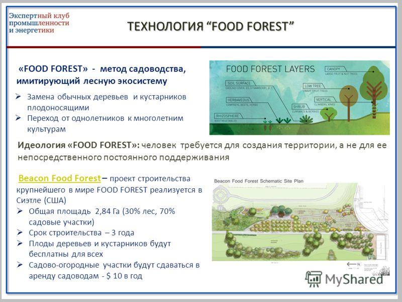 ТЕХНОЛОГИЯ FOOD FOREST «FOOD FOREST» - метод садоводства, имитирующий лесную экосистему Идеология «FOOD FOREST»: человек требуется для создания территории, а не для ее непосредственного постоянного поддерживания Замена обычных деревьев и кустарников