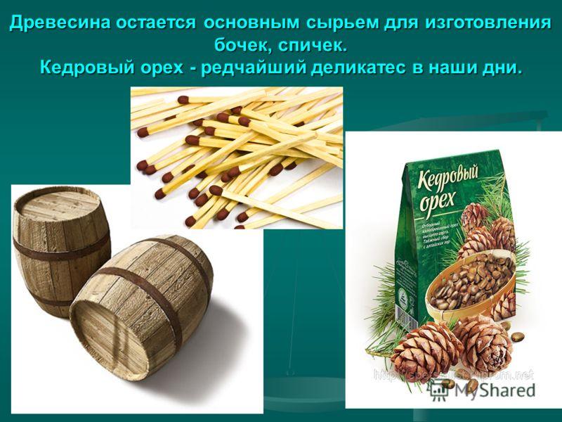 Древесина остается основным сырьем для изготовления бочек, спичек. Кедровый орех - редчайший деликатес в наши дни.