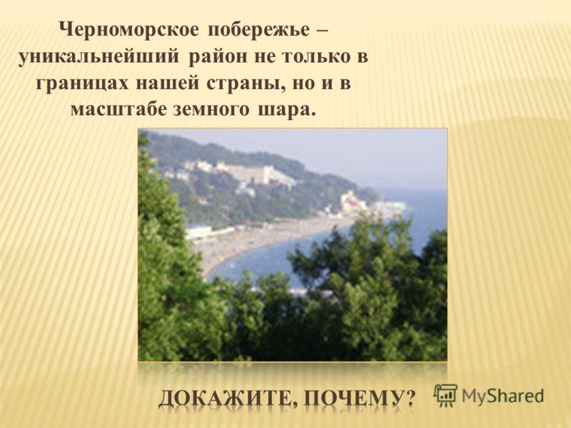 Черноморское побережье – уникальнейший район не только в границах нашей страны, но и в масштабе земного шара.