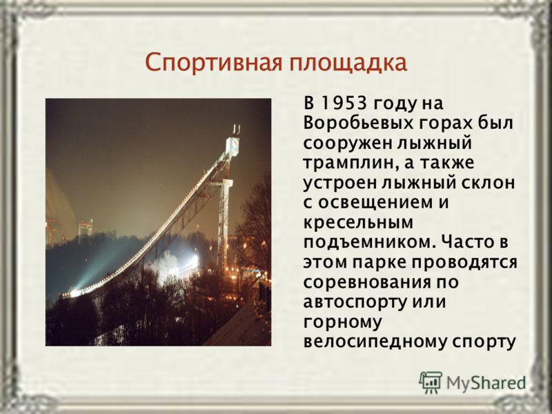 В 1953 году на Воробьевых горах был сооружен лыжный трамплин, а также устроен лыжный склон с освещением и кресельным подъемником. Часто в этом парке проводятся соревнования по автоспорту или горному велосипедному спорту