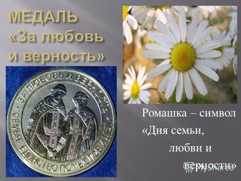 Ромашка – символ « Дня семьи, любви и верности »