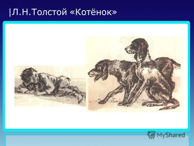 |Л.Н.Толстой «Котёнок»