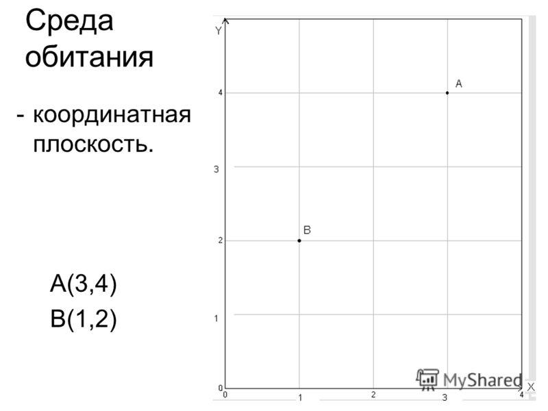 Среда обитания -координатная плоскость. А(3,4) В(1,2)