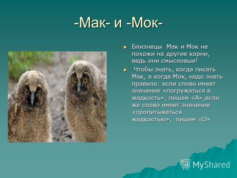 -Мак- и -Мок- Близнецы Мак и Мок не похожи на другие корни, ведь они смысловые! Близнецы Мак и Мок не похожи на другие корни, ведь они смысловые! Чтобы знать, когда писать Мак, а когда Мок, надо знать правило: если слово имеет значение «погружаться в