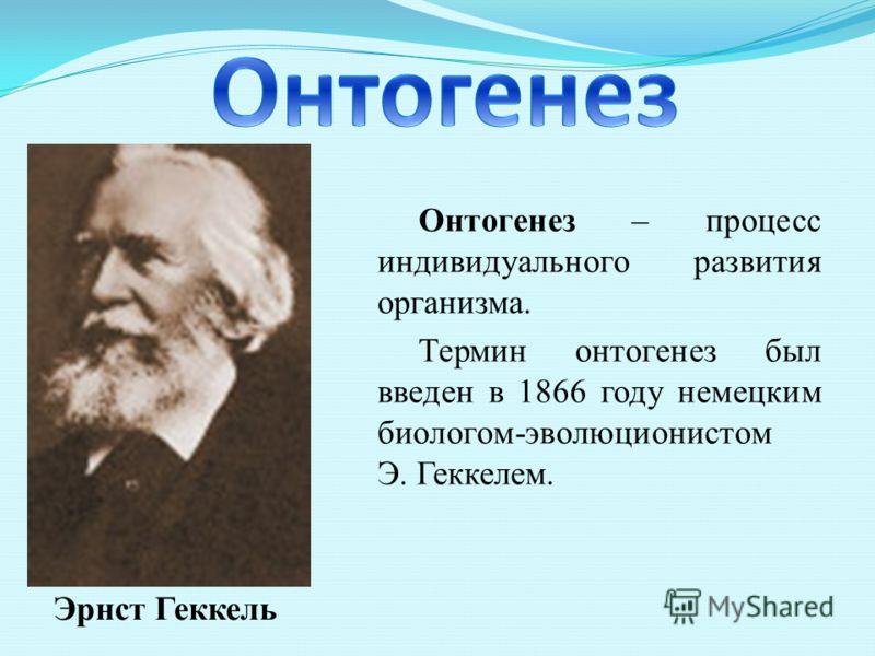 Онтогенез – процесс индивидуального развития организма. Термин онтогенез был введен в 1866 году немецким биологом-эволюционистом Э. Геккелем. Эрнст Геккель