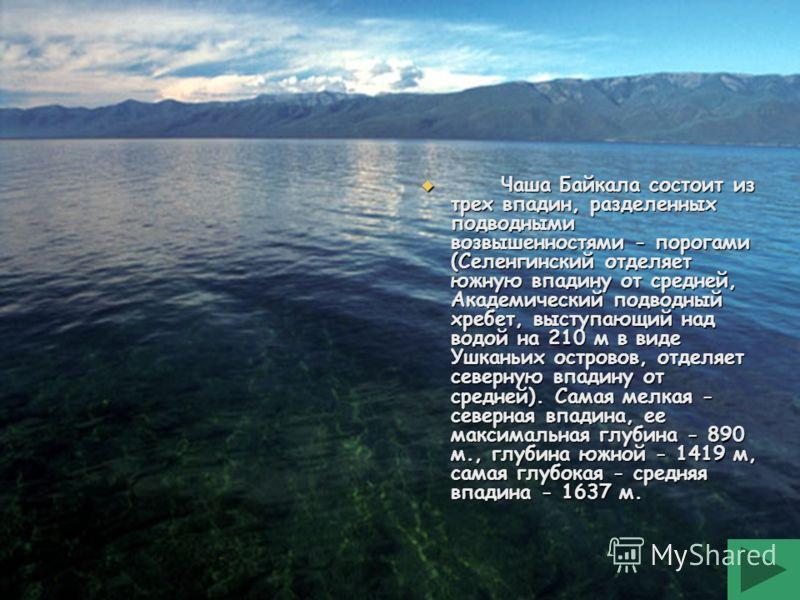 Чаша Байкала состоит из трех впадин, разделенных подводными возвышенностями - порогами (Селенгинский отделяет южную впадину от средней, Академический подводный хребет, выступающий над водой на 210 м в виде Ушканьих островов, отделяет северную впадину