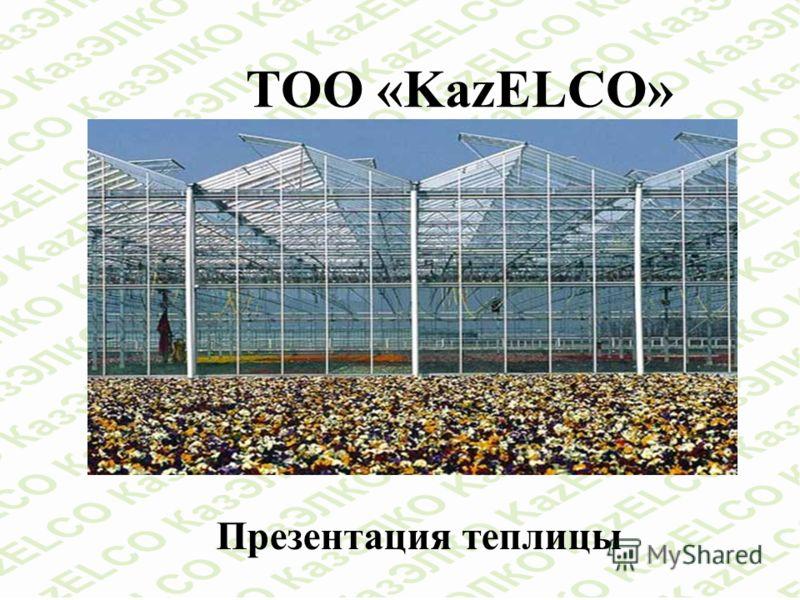 ТОО «KazELСO» Презентация теплицы