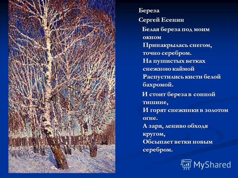 Береза Сергей Есенин Белая береза под моим окном Принакрылась снегом, точно серебром. На пушистых ветках снежною каймой Распустились кисти белой бахромой. И стоит береза в сонной тишине, И горят снежинки в золотом огне. А заря, лениво обходя кругом,