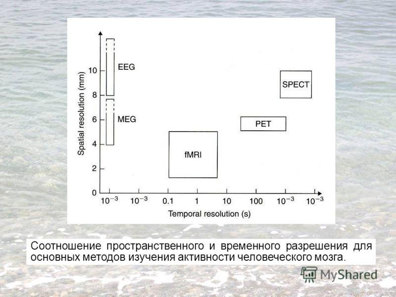 Соотношение пространственного и временного разрешения для основных методов изучения активности человеческого мозга.