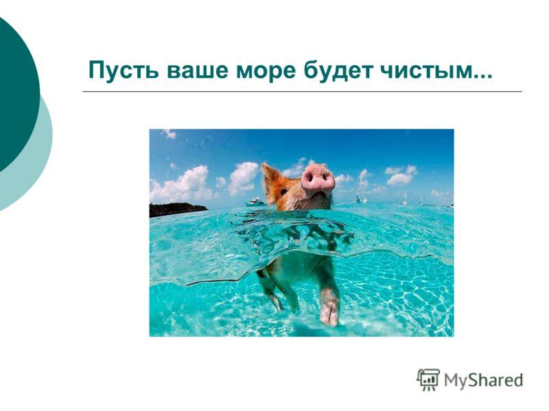 Пусть ваше море будет чистым...