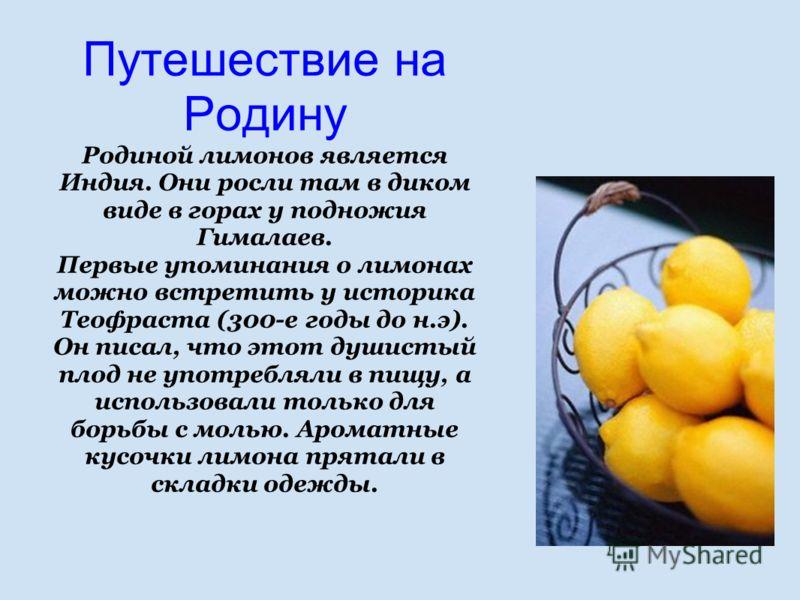 Путешествие на Родину Родиной лимонов является Индия. Они росли там в диком виде в горах у подножия Гималаев. Первые упоминания о лимонах можно встретить у историка Теофраста (300-е годы до н.э). Он писал, что этот душистый плод не употребляли в пищу