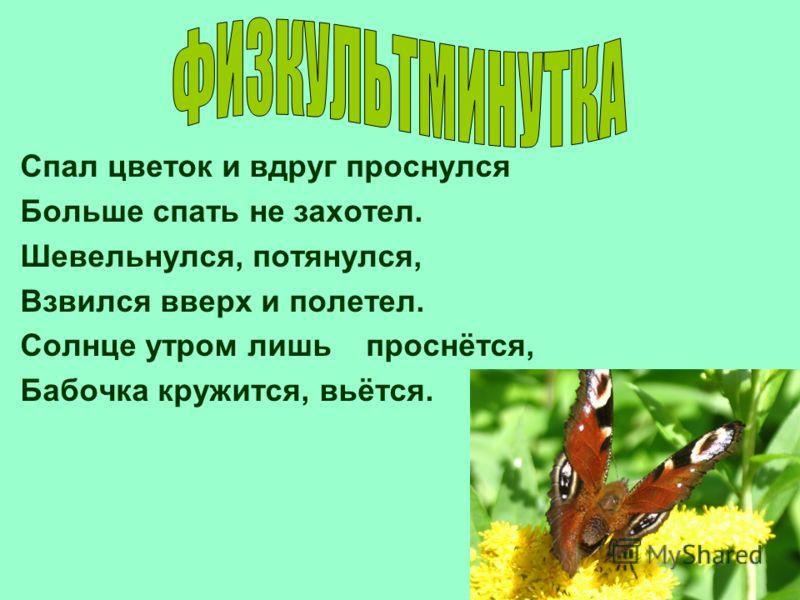 Спал цветок и вдруг проснулся Больше спать не захотел. Шевельнулся, потянулся, Взвился вверх и полетел. Солнце утром лишь проснётся, Бабочка кружится, вьётся.