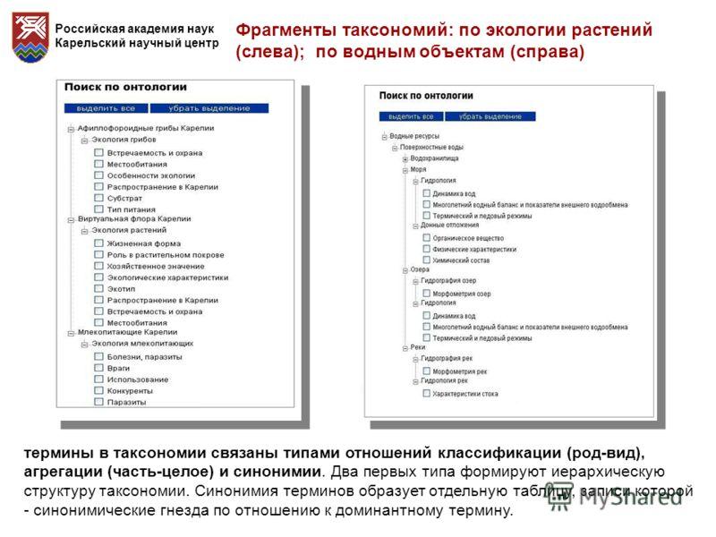 Российская академия наук Карельский научный центр термины в таксономии связаны типами отношений классификации (род-вид), агрегации (часть-целое) и синонимии. Два первых типа формируют иерархическую структуру таксономии. Синонимия терминов образует от