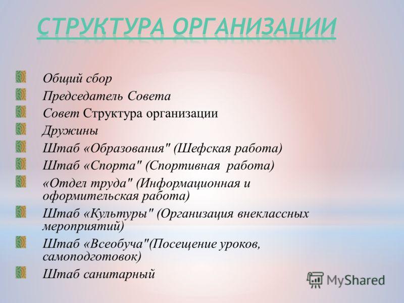 Общий сбор Председатель Совета Совет Структура организации Дружины Штаб «Образования