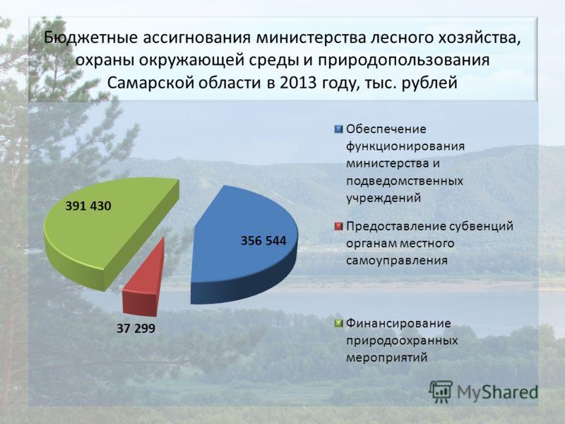Бюджетные ассигнования министерства лесного хозяйства, охраны окружающей среды и природопользования Самарской области в 2013 году, тыс. рублей