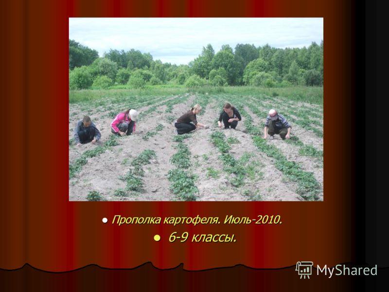 Прополка картофеля. Июль-2010. Прополка картофеля. Июль-2010. 6-9 классы. 6-9 классы.