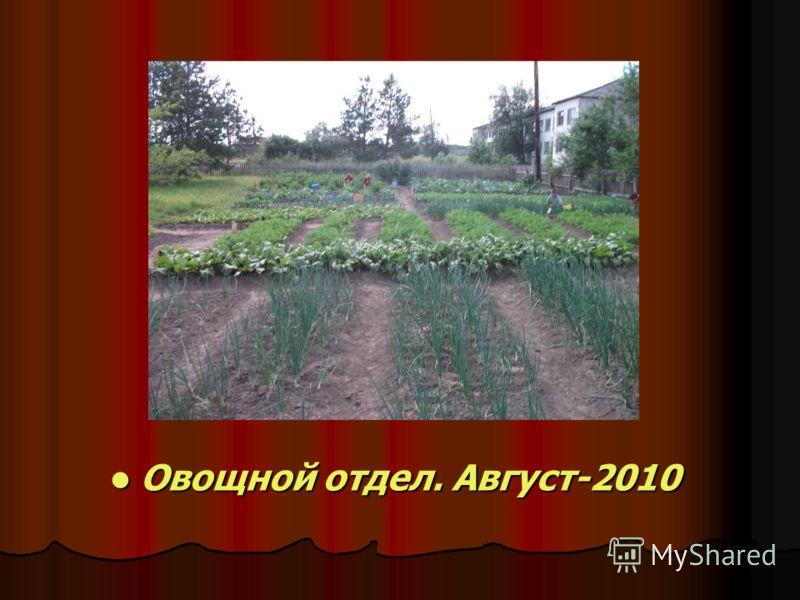 Овощной отдел. Август-2010 Овощной отдел. Август-2010