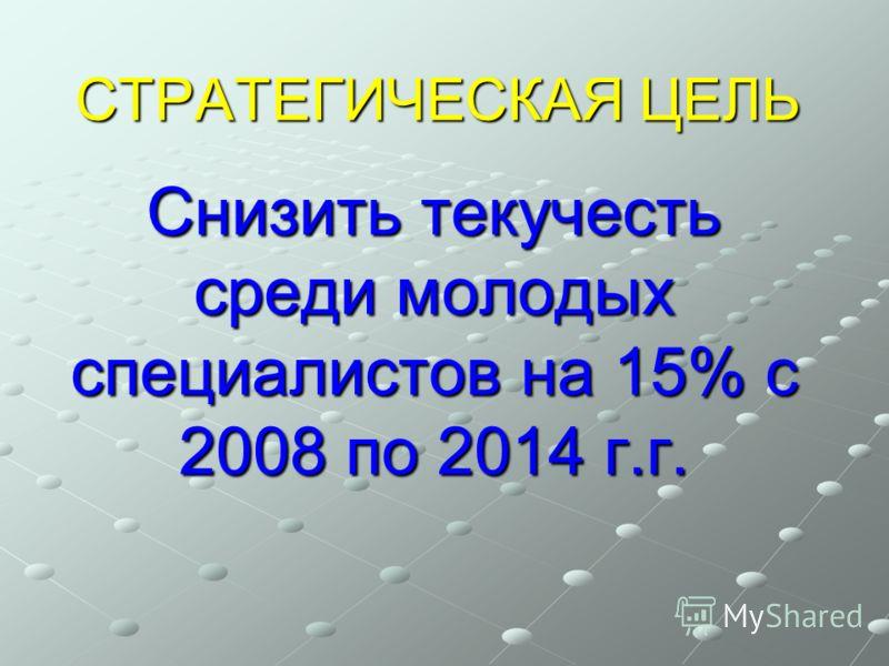 СТРАТЕГИЧЕСКАЯ ЦЕЛЬ Снизить текучесть среди молодых специалистов на 15% с 2008 по 2014 г.г.