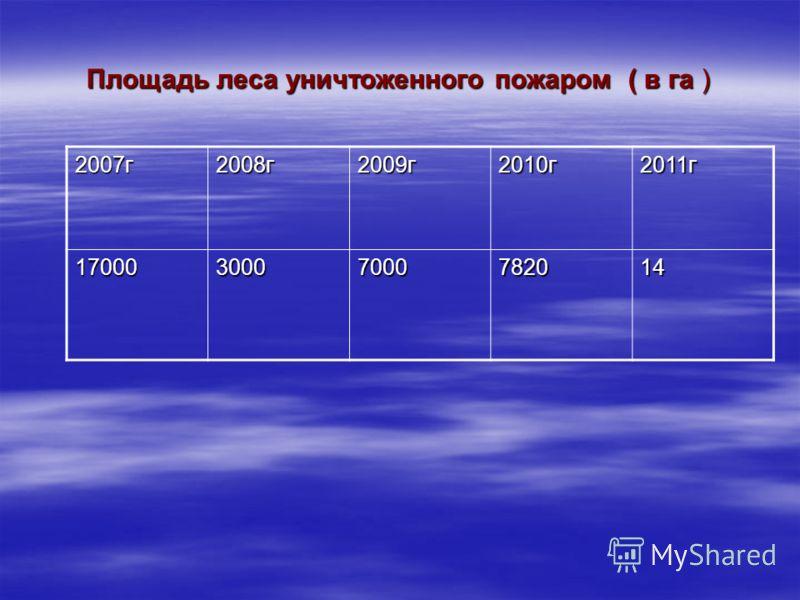Площадь леса уничтоженного пожаром ( в га ) 2007г2008г2009г2010г2011г 1700030007000782014