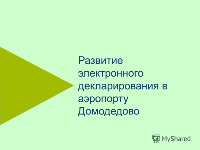 Развитие электронного декларирования в аэропорту Домодедово