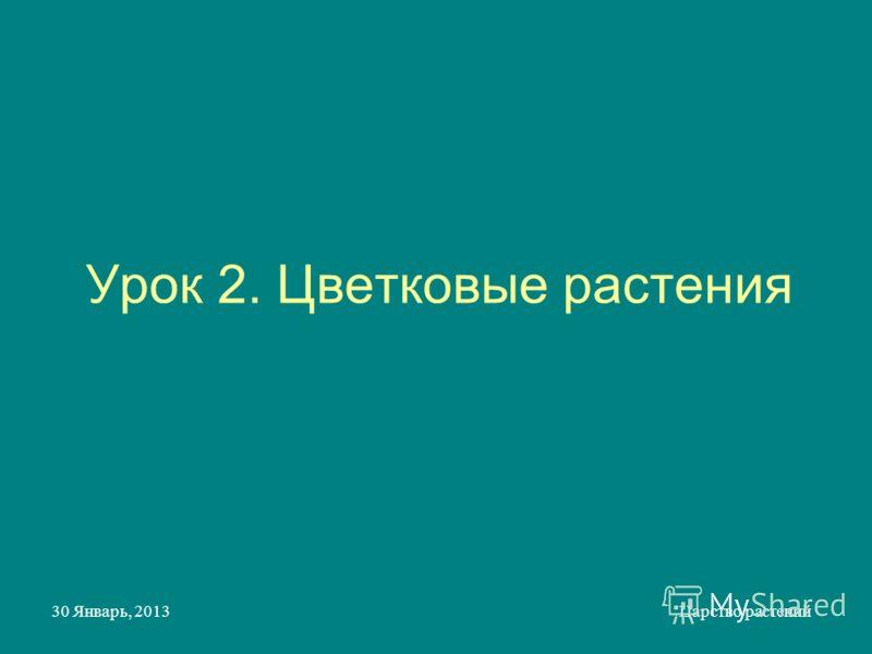 30 Январь, 2013Царство растений Урок 2. Цветковые растения