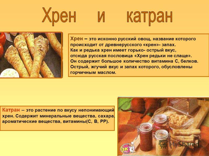 Хрен – это исконно русский овощ, название которого происходит от древнерусского «крен»- запах. Как и редька хрен имеет горько- острый вкус, отсюда русская пословица «Хрен редьки не слаще». Он содержит большое количество витамина С, белков. Острый, жг