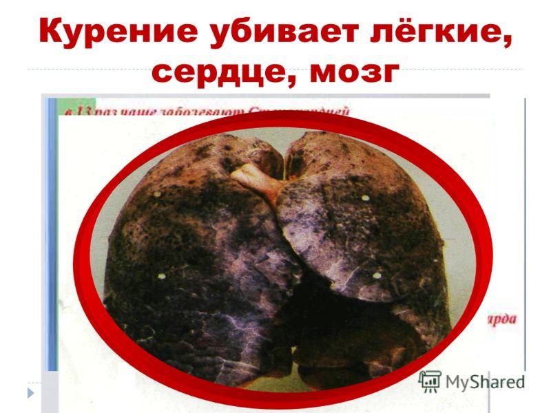 Курение убивает лёгкие, сердце, мозг